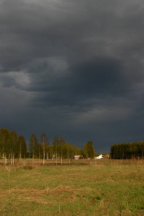 Dark clouds above fields and forest