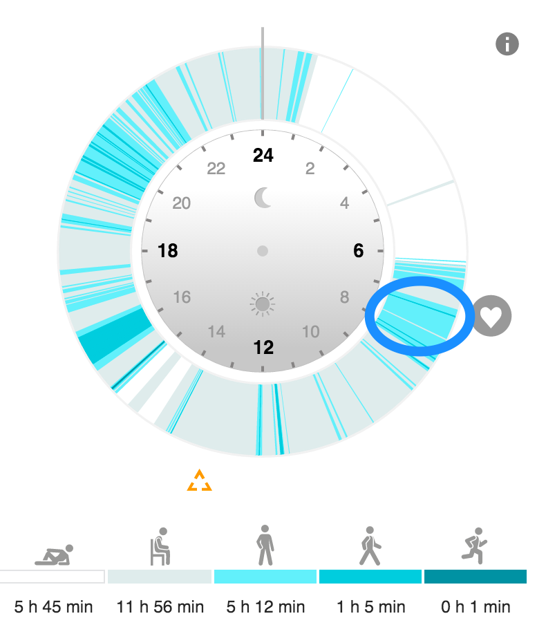 A days activity chart according to Loop