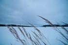 Day 11 – Windy